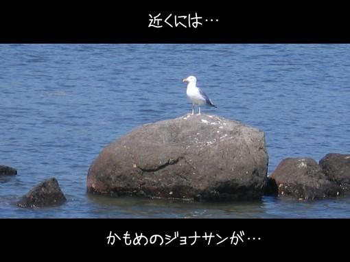 106_0607